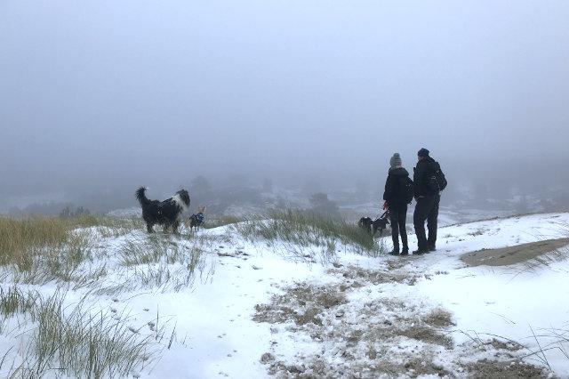 21-dogwalktrail-nederland-wandelen-hond-sneeuw