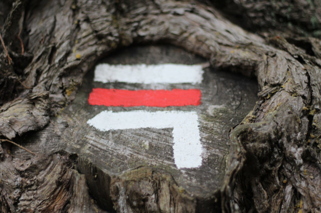 42-dogwalktrail-rood-wit-markering